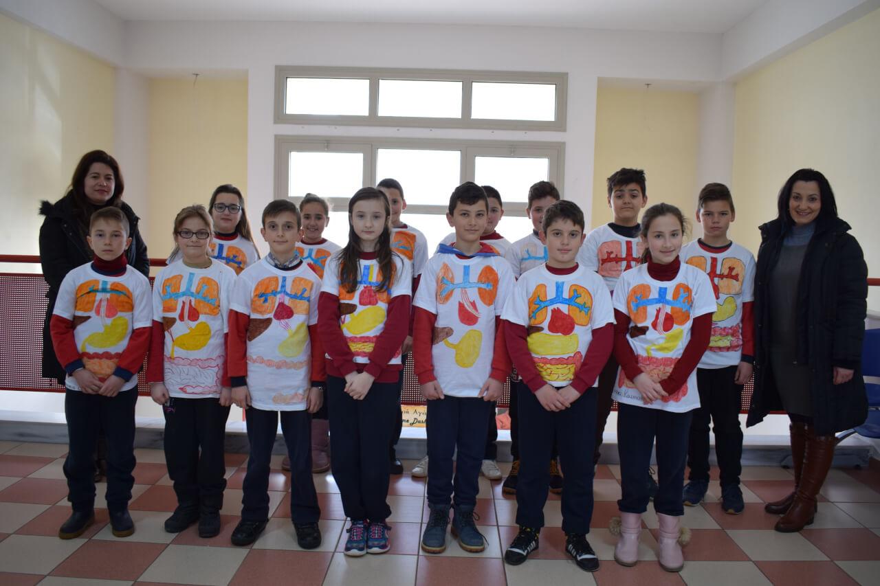 Eργασία μαθητών για το ανθρώπινο πεπτικό και κυκλοφορικό σύστημα